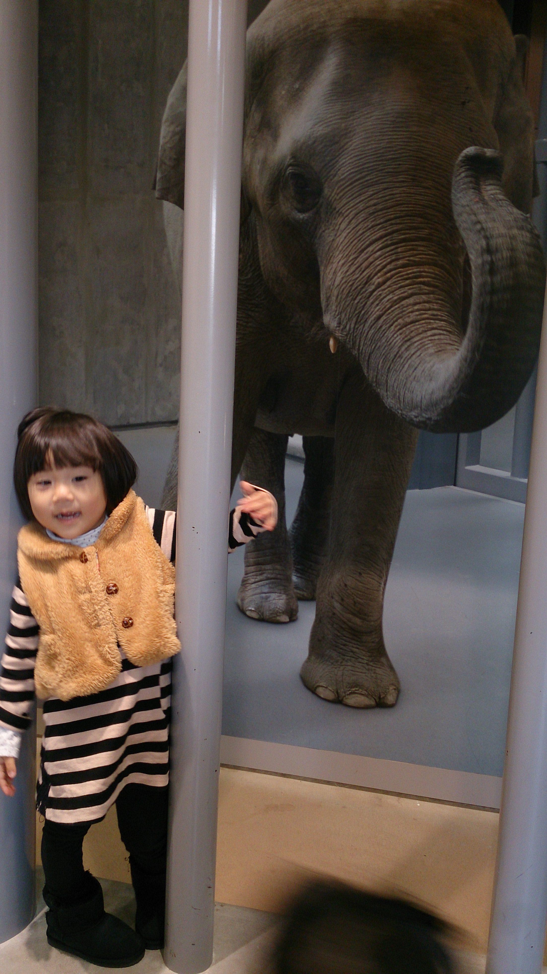 東山動植物園へ行ってきました