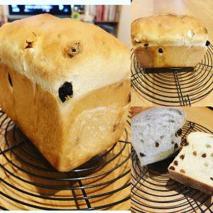 たっぷりレーズン食パン